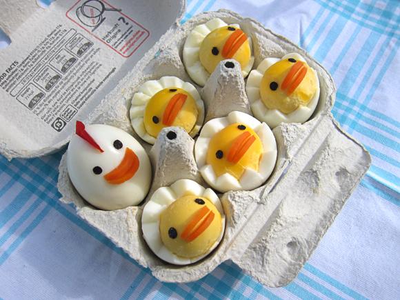 Chicken Egg Family